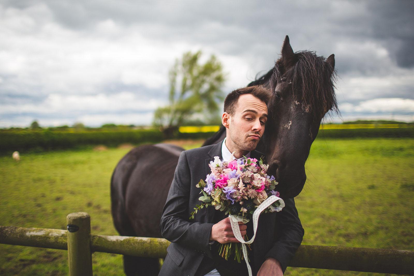 Horse wedding1